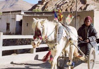 Bhutan and Tibet Adventure
